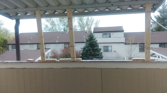 HIS VIEW BEFORE AWNING GOT DONE