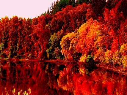 Autumn-Lake-hd-wallpaper
